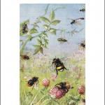 Uomini, boschi e api