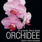 il-grande-libro-delle-orchidee