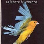 La lezione del canarino
