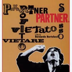 - Partner